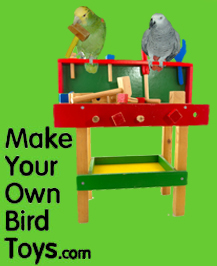 Make Your Own Bird Toys